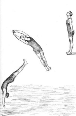 THE DOLPHIN DIVE